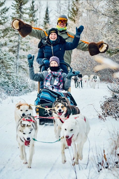 people sledding with dogs