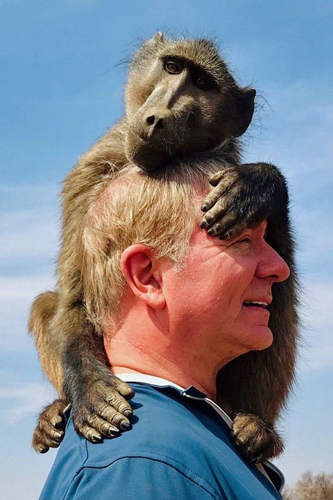 monkey on mans head