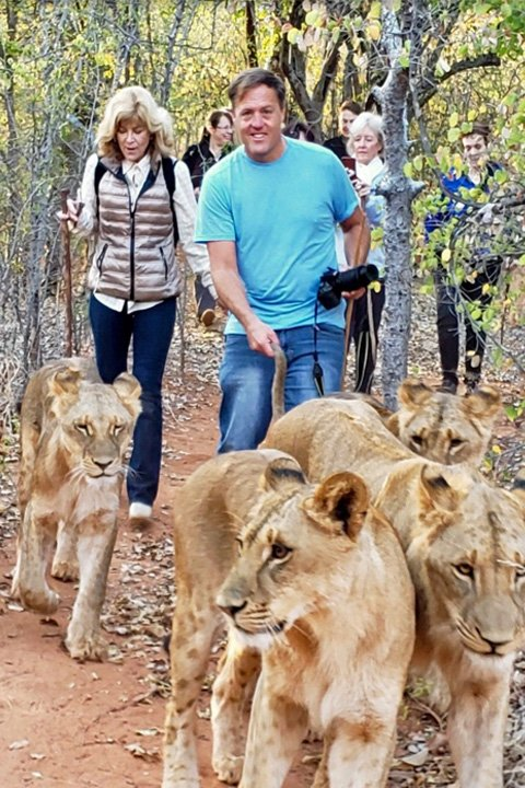 hiking with African Lions