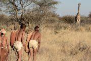 Kalahari-Header