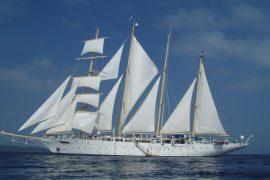 singles sailing